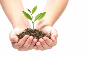 Environment-stewardship