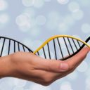 Values: the Missing Link to Understanding Organizational DNA
